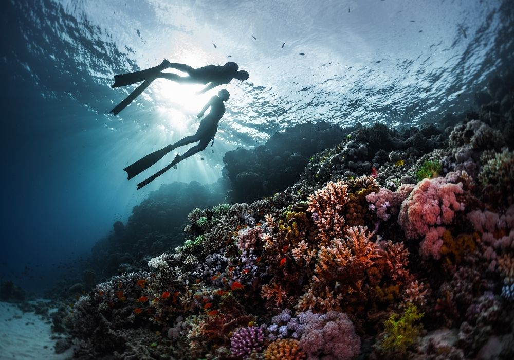 freedivers-swimming-over-coral-reef