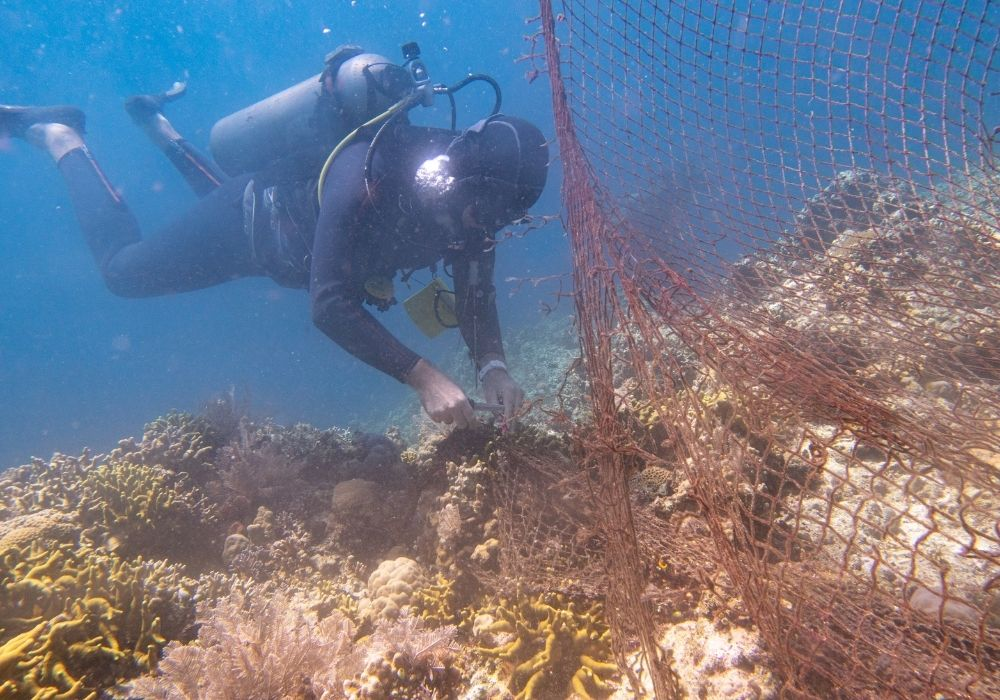 ghost-net-on-coral-reef