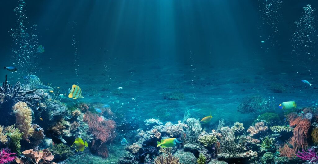 ocean-tropical-seabed