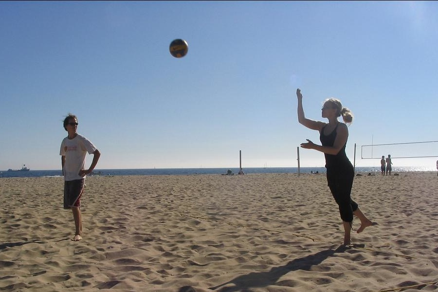 What Is The Best Volleyball