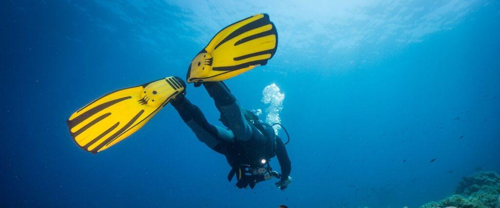 Best Freediving Fins Reviewed